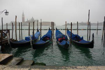 viajes beagle italia lagos a venecia 2