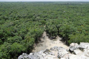 viajes beagle mexico mundo maya 2
