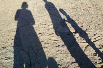 viajes beagle mexico yucatan en familia 2