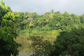 viajes beagle srilanka esencial 2