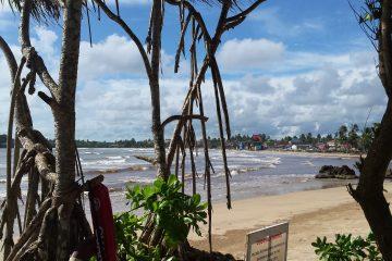 viajes beagle srilanka nuestro 2