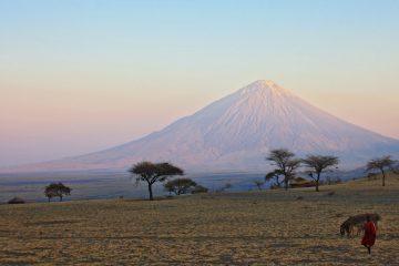 viajes beagle tanzania zanzibar 2
