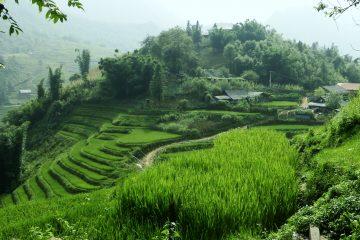 viajes beagle vietnam clasico 2
