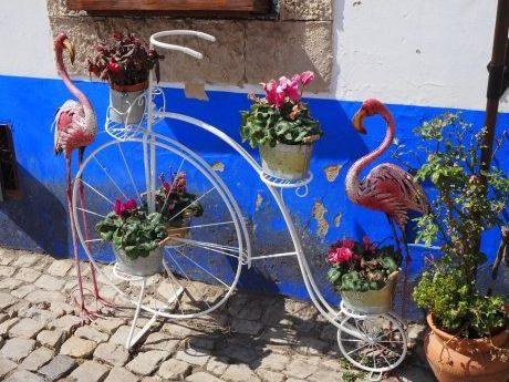 viajes beagle 5 razones para viajar en primavera