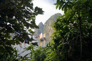 viajes beagle verano en vietnam camboya