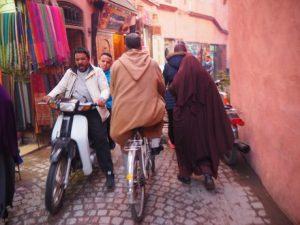 viajes beagle viaje marrakech ninos
