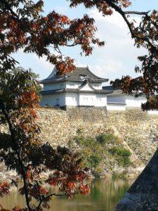 recomendaciones japon viajes beagle