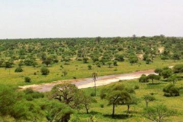 viajes beagle imprescindibles de tanzania