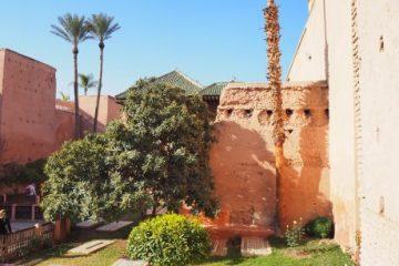 viajes beagle jordania al completo