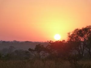viajes-beagle-consejos-sudafrica