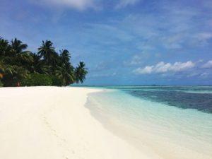 viajes beagle mejor playa paloma