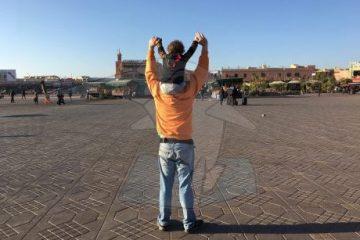 viajes beagle descubre sudafrica en familia