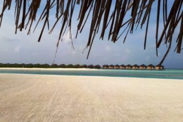 viajes beagle dubai bangkok y maldivas