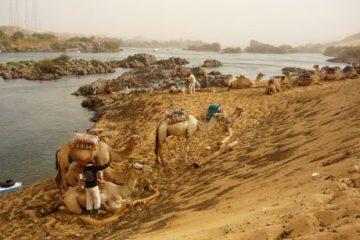 viajes beagle egipto y mar rojo