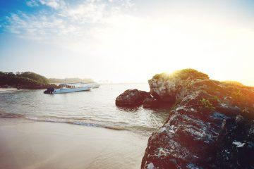 viajes beagle yucatan