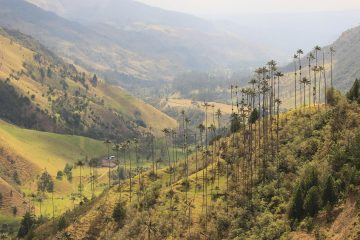 viajes beagle colombia arqueologia y cultura