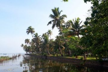 viajes beagle india sri lanka