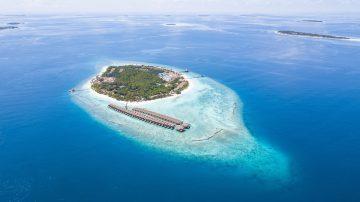 viajes beagle Maldivas y Japón