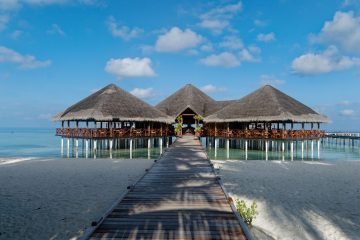 viajes beagle Maldivas con Dubai y Bangkok