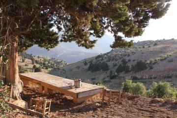 viajes beagle libano