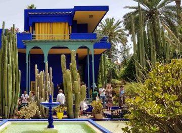 viajes beagle marrakech puente diciembre