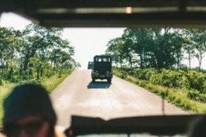 viajes beagle sudafrica niños familia