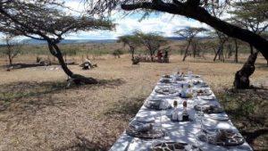 viajes beagle kandili mara camp