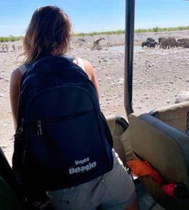 viajes beagle safari namibia